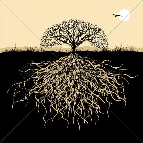 http://joelfleischmandotcom.files.wordpress.com/2013/09/tree-silhouette-with-roots.jpg