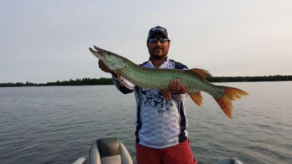 bigfish4